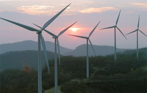 Wind Turbines Attract Tourists And Broad Support