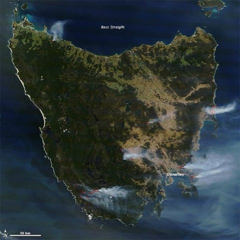 tasmanfires