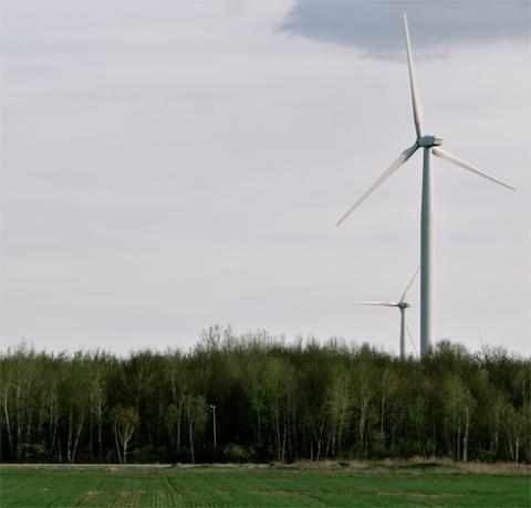 turbinetree