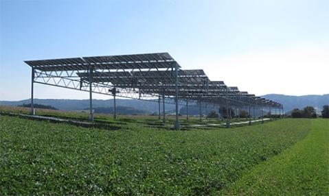 solarfarmin