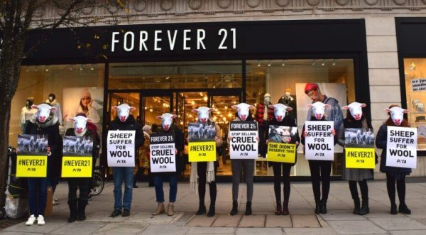 Forever21-wool-protest-1-770x426